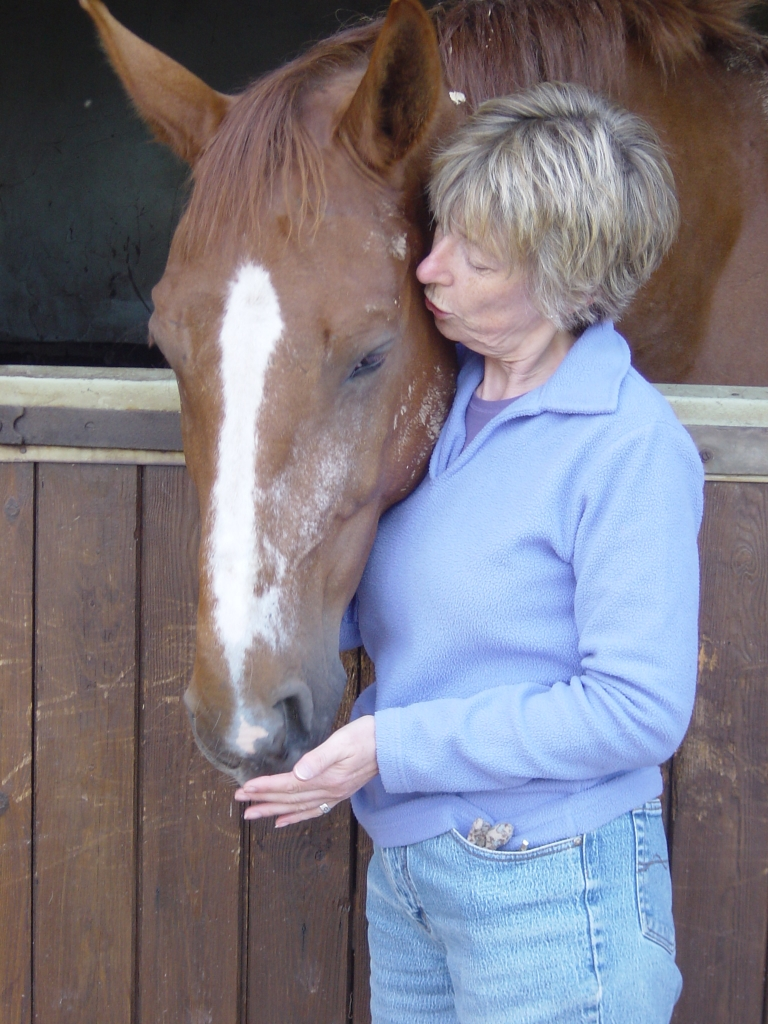 Giving equine healing